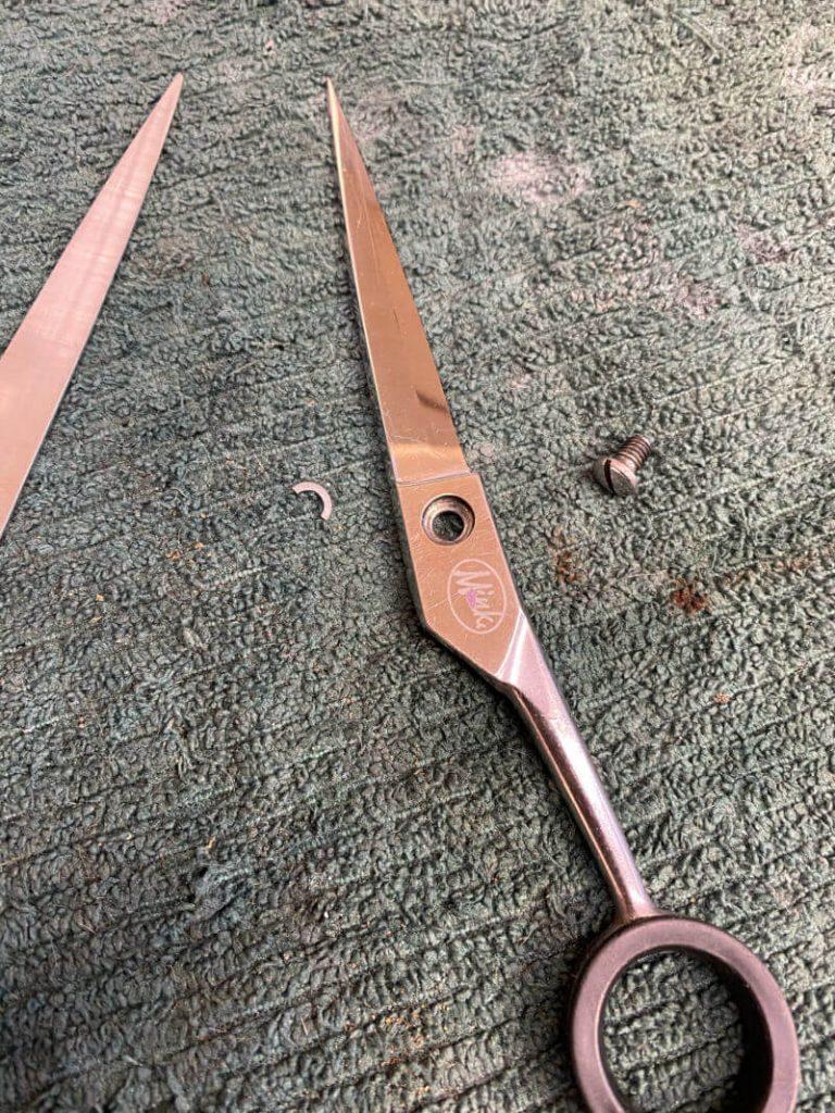 Scissor Care & Maintenance: Should I Pay a Professional? 6